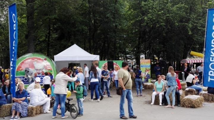 Лисьими хитростями и курочками среди сена встретили новосибирцев в День города в Центральном парке