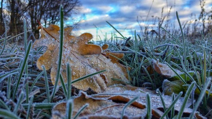 А снег идет: в Башкирии стремительно холодает