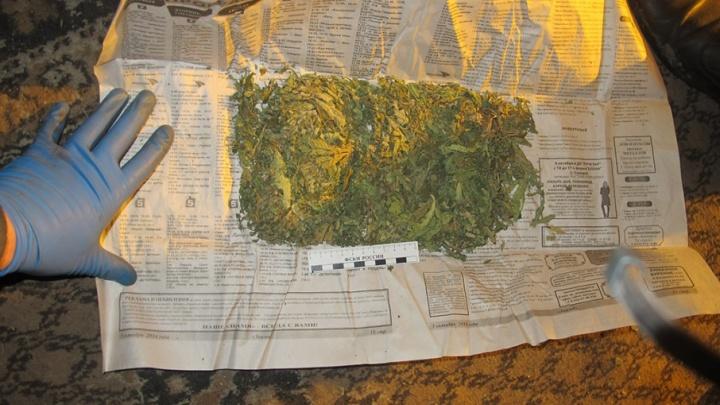 Полиция изъяла 600 граммов конопли у безработного жителя Далматово