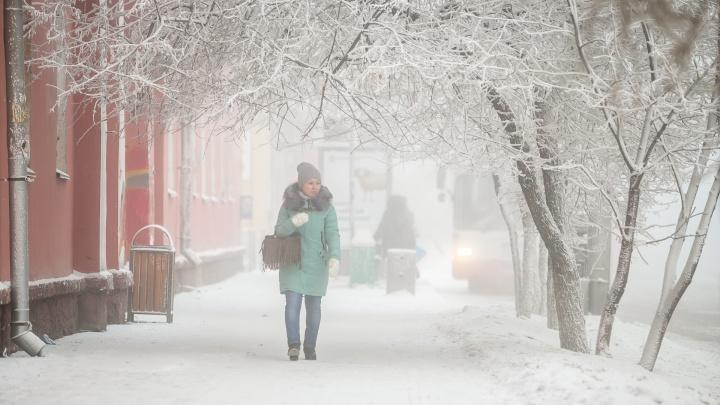 В самую морозную неделю зимы почти 200 красноярцев получили обморожение
