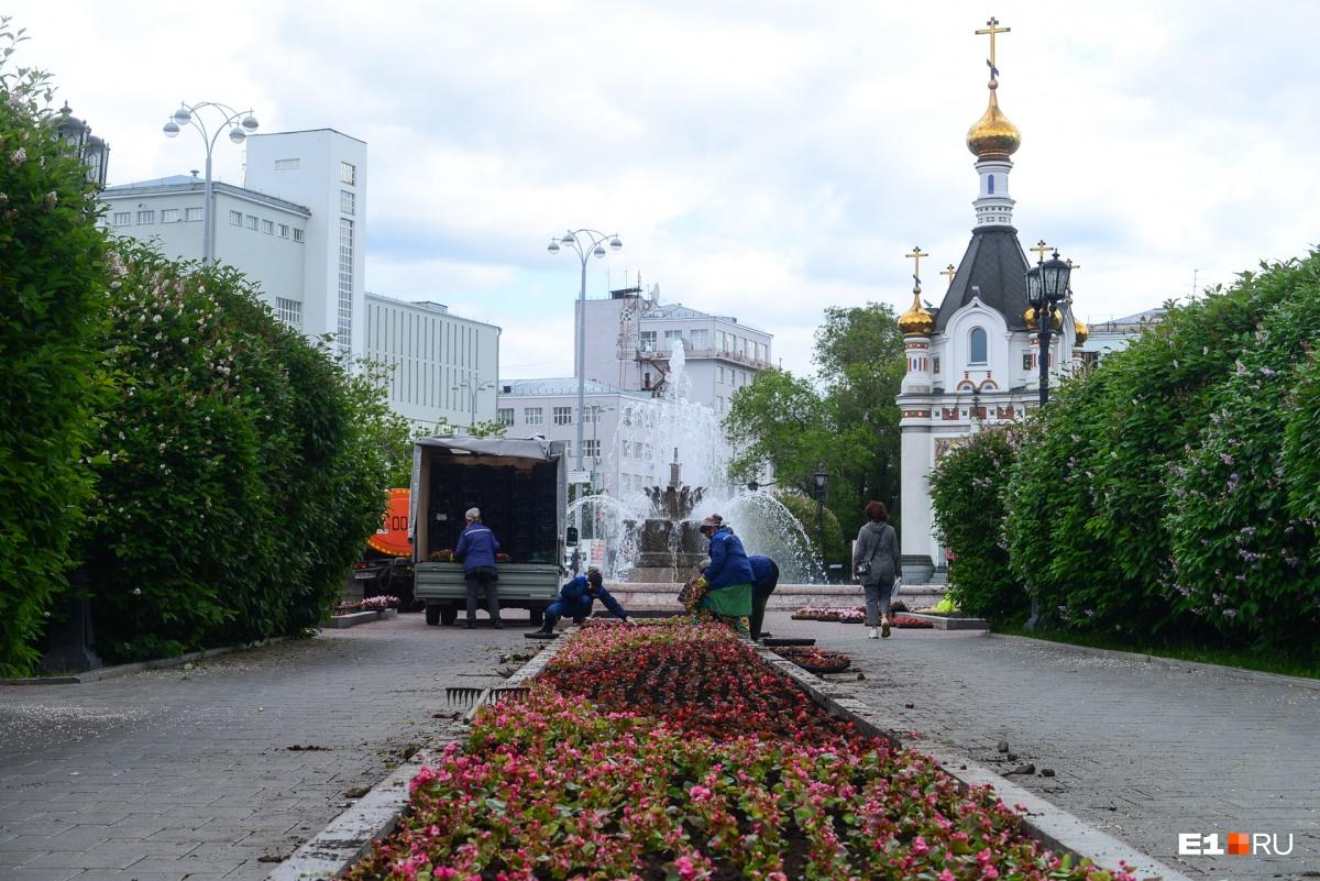 Возле фонтана «Каменный цветок»