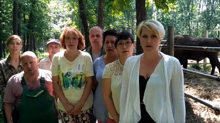 Сотрудники «Мишутки» в Нижнем Новгороде попросили Путина не закрывать зоопарк
