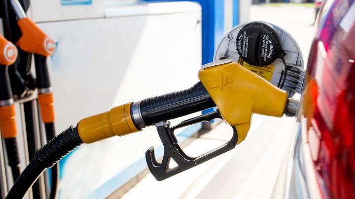 В Ярославле три недели подряд дорожает бензин: прогноз от эксперта