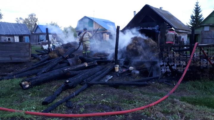 Пытался потушить самостоятельно: в Башкирии при пожаре пострадал хозяин дома