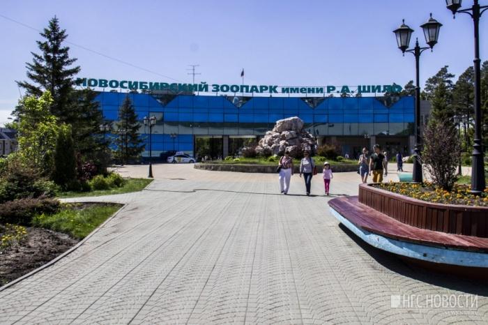За год посмотреть на животных Новосибирского зоопарка пришли более 1,8 млн гостей