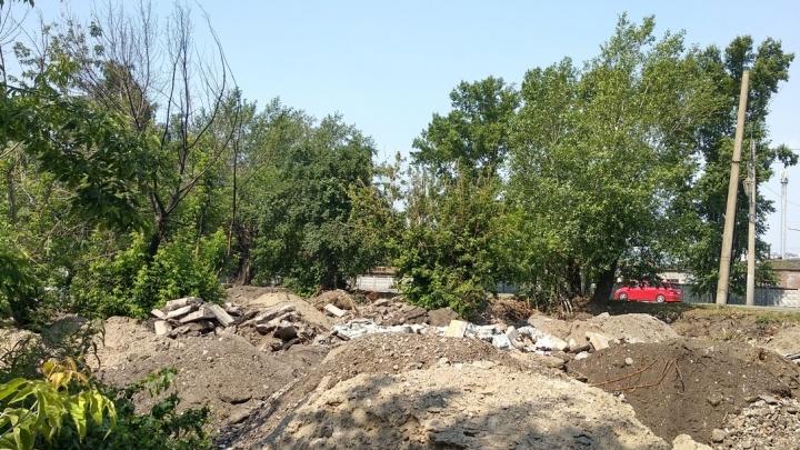 Стала известна благородная цель сноса деревьев на Новосибирской