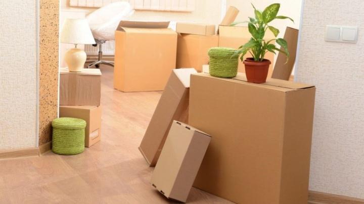 Переезд без проблем: как надёжно упаковать мебель и ценные вещи и сэкономить на транспортировке
