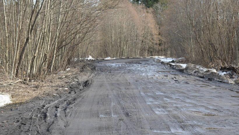 В Приморском и Вельском районах до конца года отремонтируют три подъезда к дачным посёлкам