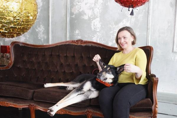 В «Фотостудии 717» организовали три зоны, где можно было сфотографироваться с одним из четырех щенков или с двумя взрослыми собаками