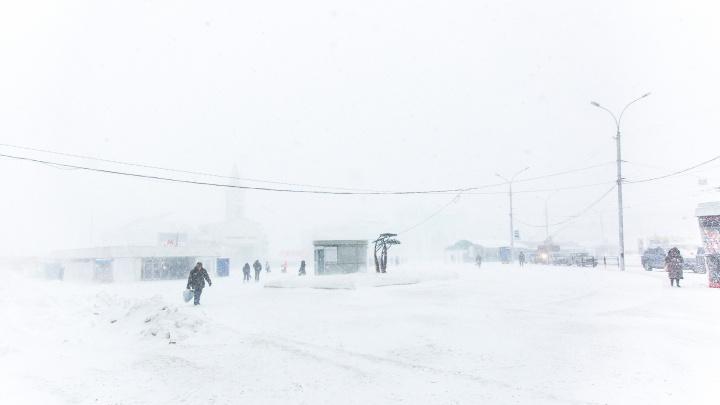 «Шли по метели, пришли зарёванные»: кондуктора уволили за то, что она высадила девочек из автобуса