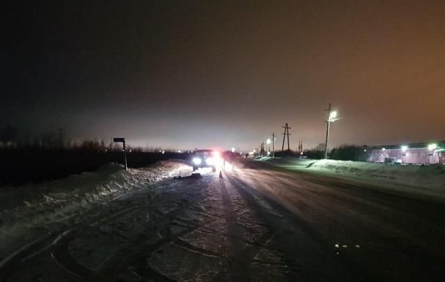 Грузовик насмерть сбил молодую женщину на трассе в Плесецком районе
