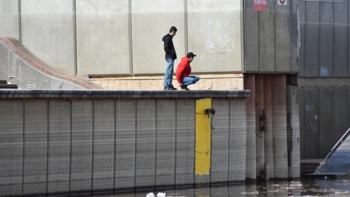 Очевидцы связывали куртки и кидали их в воду: подробности гибели утонувшего 20-летнего тюменца