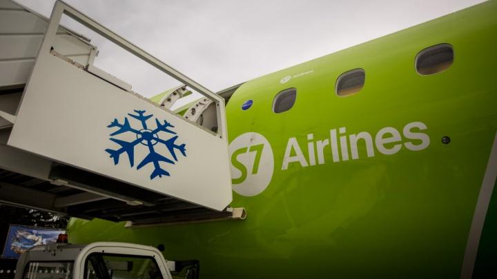 Самолёт до Нижневартовска вернулся в Новосибирск из-за проблемы с шасси