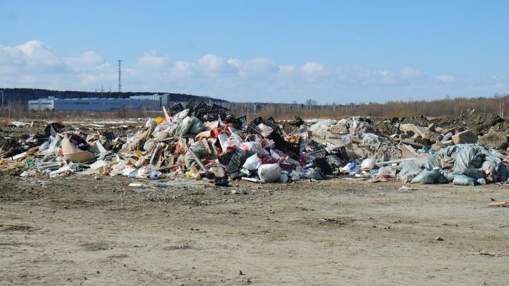 Не хватает 6 тысяч контейнерных площадок: Куйвашев отчитал мэров за «мусорные» провалы