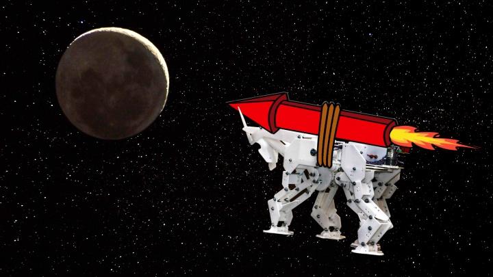 Чудо механики: самарец хочет отправить козу на Луну