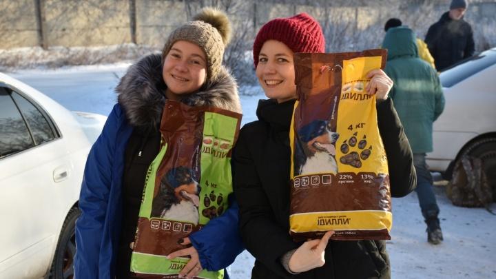 «Хватит на неделю»: неравнодушные красноярцы собрали для бездомных животных больше 230 кг корма