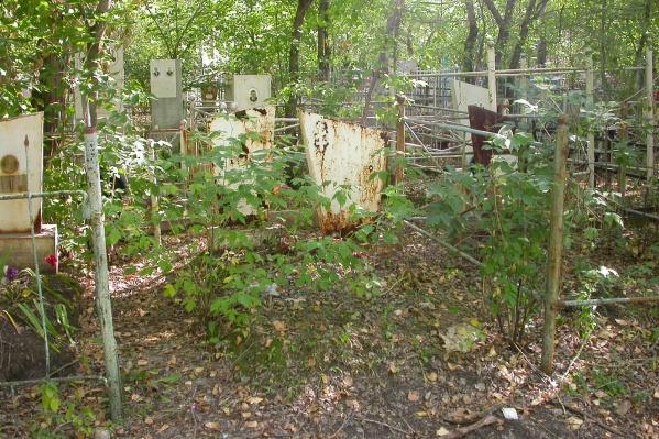На кладбище уничтожили 48 сосен и 7 берёз