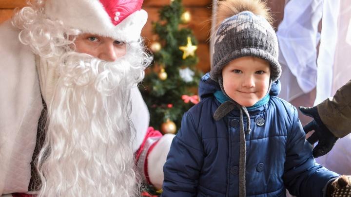 Ростовский зоопарк приглашает всех на праздничные мероприятия