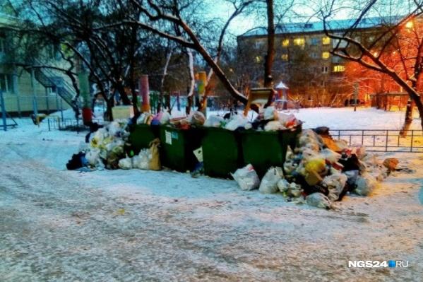 Переполненные мусорные баки стали одной из главных проблем красноярцев в начале года