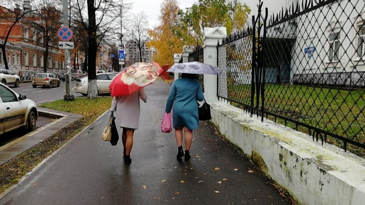 МЧС предупреждает об усилении ветра в Прикамье