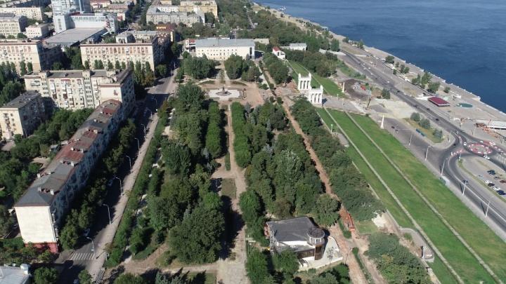 «Они угнетают друг друга»: в Волгограде на Центральной набережной вырубят 140 деревьев