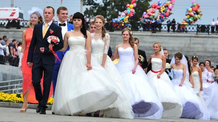 Свердловчане стали реже жениться и чаще разводиться. Пугающая статистика ЗАГС