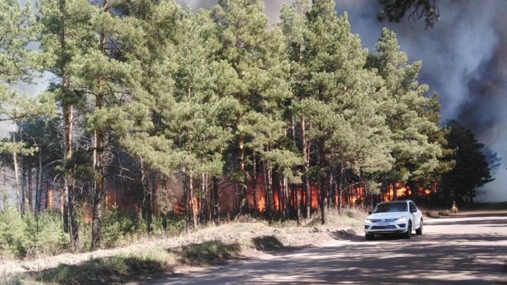 Лес у Минусинска полыхает огнём: пожарные зовут на помощь добровольцев