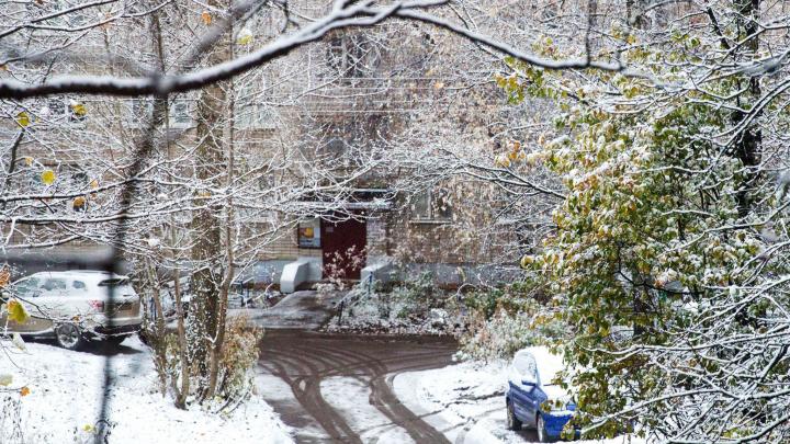 Запахнет зимой: на Ярославль идут снегопады и морозы