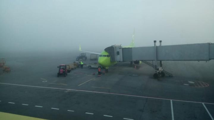 На Новосибирск спустился утренний туман: в Толмачёво задержали рейсы