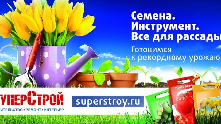 Теперь екатеринбуржцы знают, где купить красивые и недорогие цветы