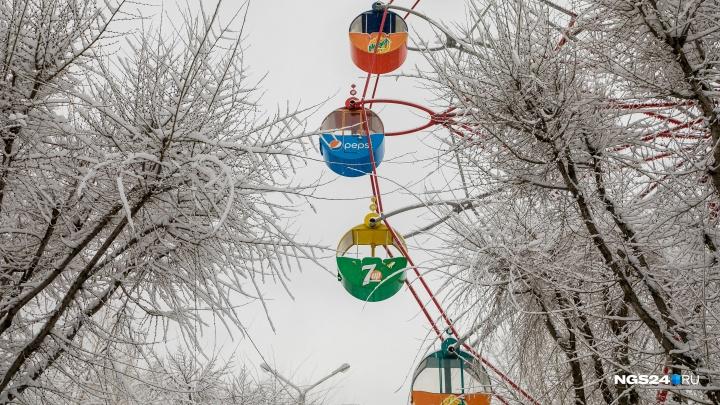«Дыхание зимы»: смотрим на сегодняшний снегопад в 15 ярких снимках