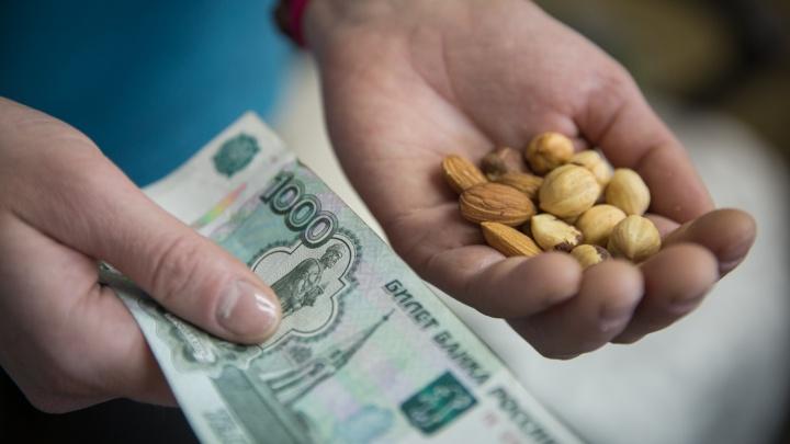 Денег нет: в Новосибирской области выросли долги по зарплате