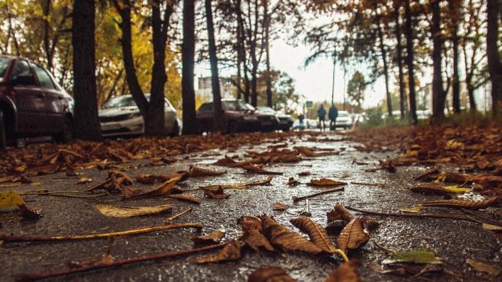 В МЧС предупредили о резком ухудшении погоды в Самарской области