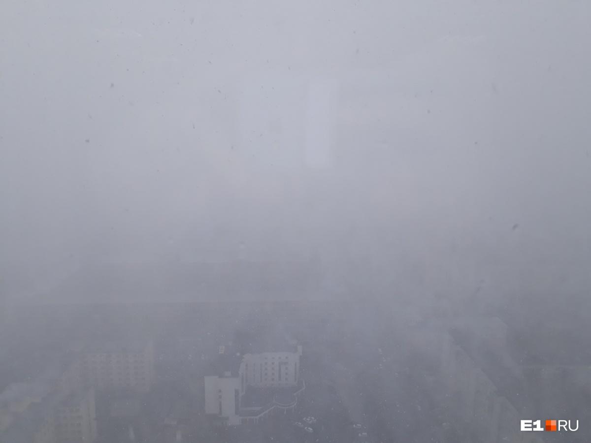 Вид с 42-го этажа «Высоцкого»