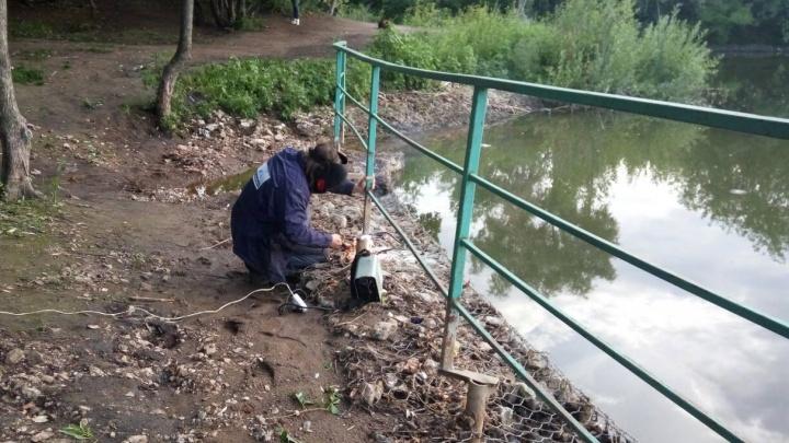 Территорию озера Леснуха на Пятой просеке оградили забором