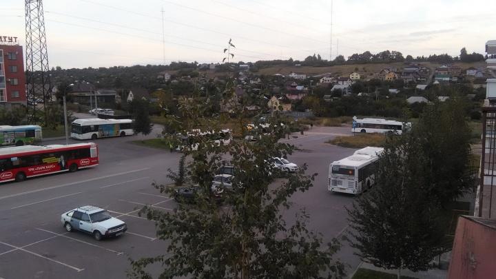 «Страшно выйти на улицу»: волгоградка пожаловалась на работу двух автобусных маршрутов