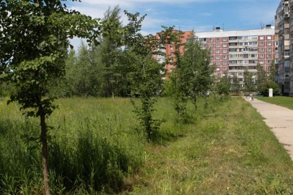 Мэрия предложила сибирякам самим выбрать, каким должен быть сквер на улице Демакова