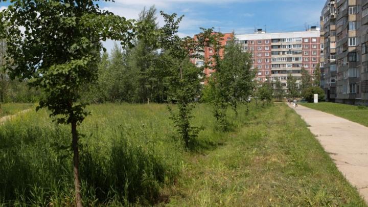 Жители Академгородка согласились продать бывший рынок, чтобы построить рядом с ним сквер