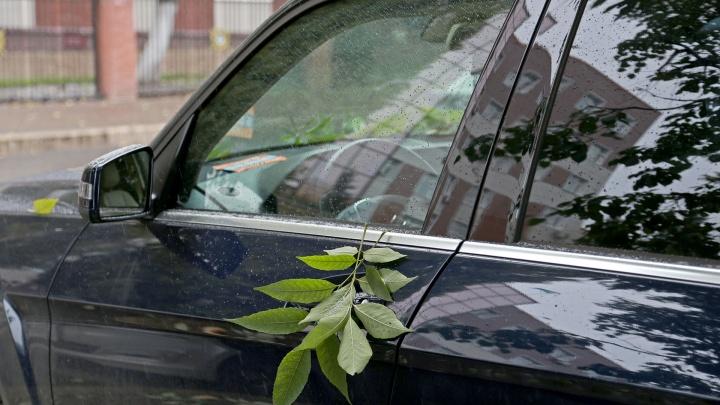 Зонт лучше держать при себе: прогноз погоды для жителей Башкирии