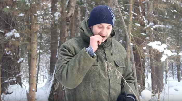 Если заблудился: красноярский лесник снял ролик о поиске еды в снежном лесу