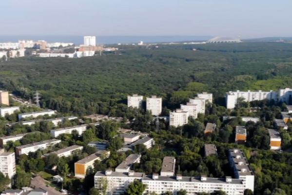 Самарцы добились, что парк 60-летия Советской власти оставили в первозданном виде