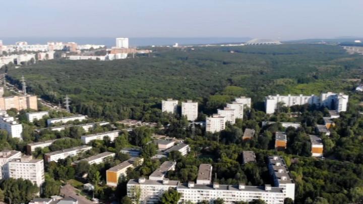 Деревьям быть: парк 60-летия Советской власти в Самаре спасли от застройки
