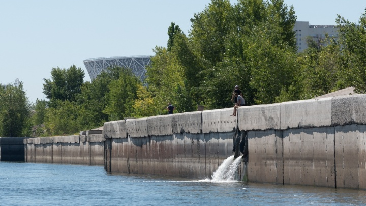 «Больше в городе нигде очистки нет»: в Волгограде от сливов канализаций в Волгу массово гибнет рыба