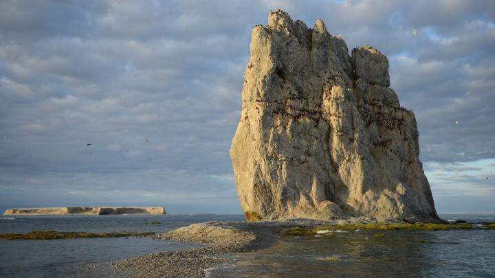 Самое старое поморское судно, найденное на Новой Земле, привезут в Архангельск