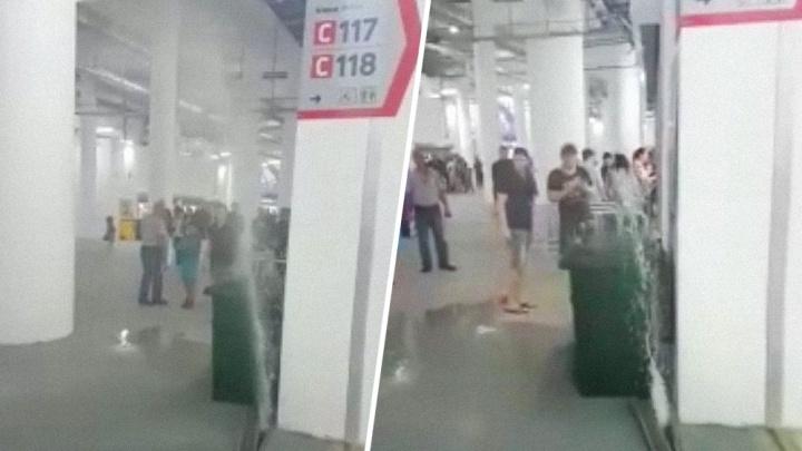 «За болельщиков страшно!»: появилось видео потопа на «Волгоград Арене» во время матча 13 июля