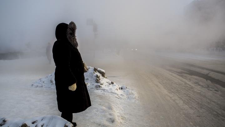 –29 на термометре, гало и замерзающие снегири. Как новосибирцы справлялись с утренним морозом