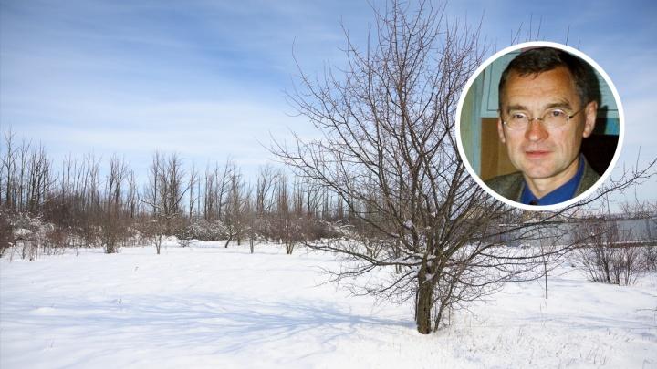 Ростовский ученый заявил, что вместо глобального потепления планету ждет похолодание