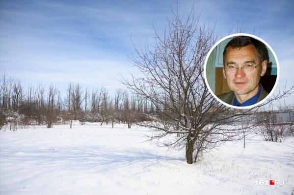 По мнению Матишова, теплая зима в Ростове — не показатель глобального потепления