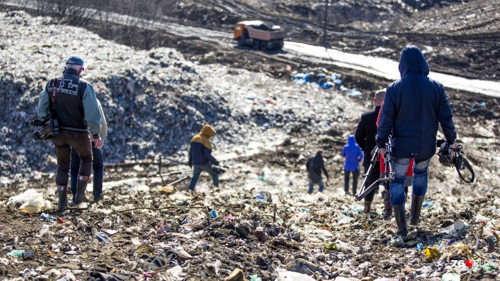 Экоактивисты готовят сбор. Они проверили обещания властей прекратить ввоз московского мусора