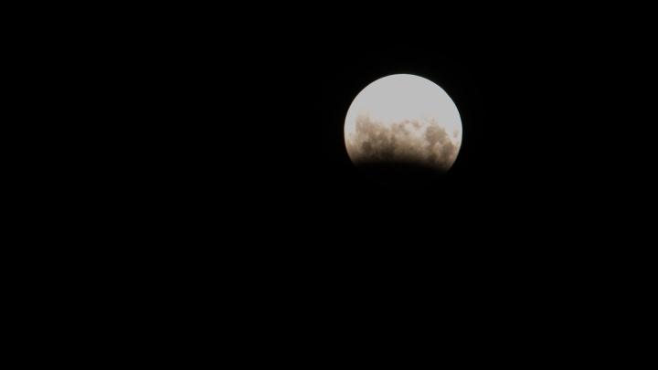 В конце ноября уральцы смогут увидеть в небе МКС и спутники Илона Маска: рассказываем как